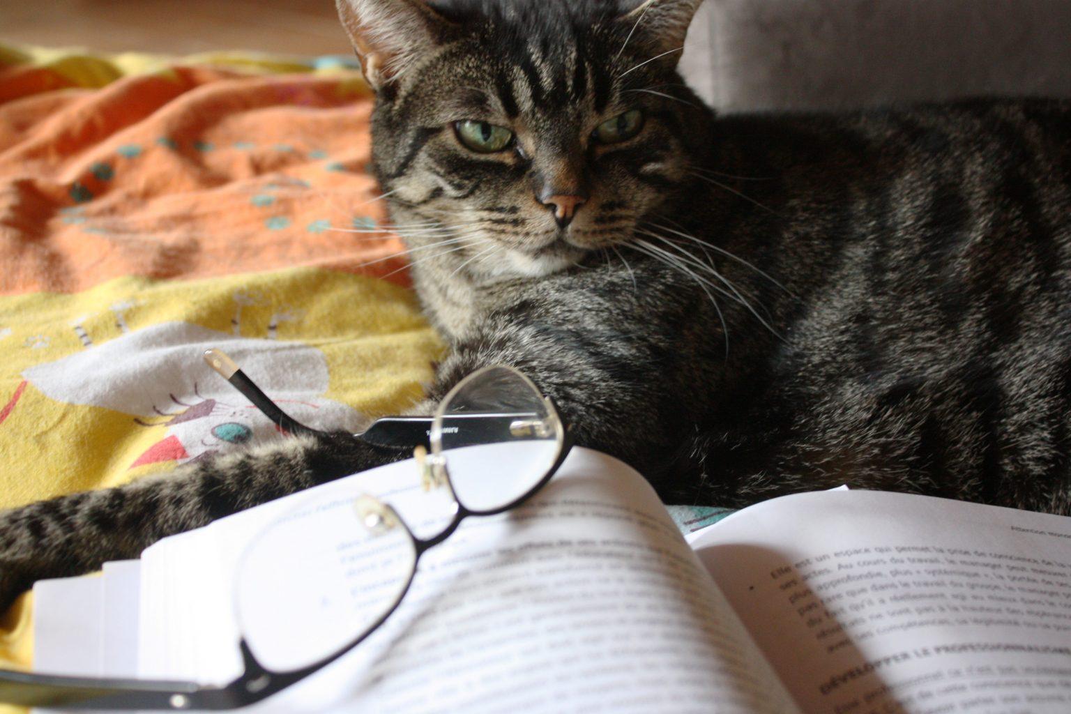 Lectures de Minoute